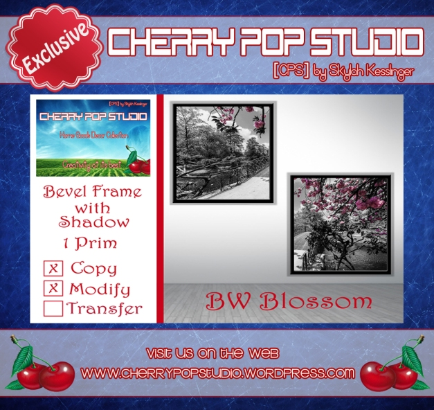 CPS BW Blossom Print Gift AD