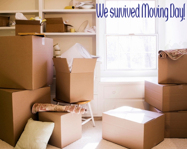 Survived Moving Day